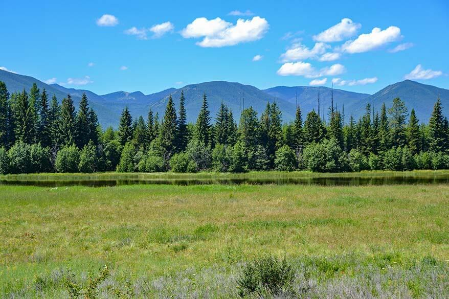 Meadow near the Pole Bridge Area in Glacier National Park Montana