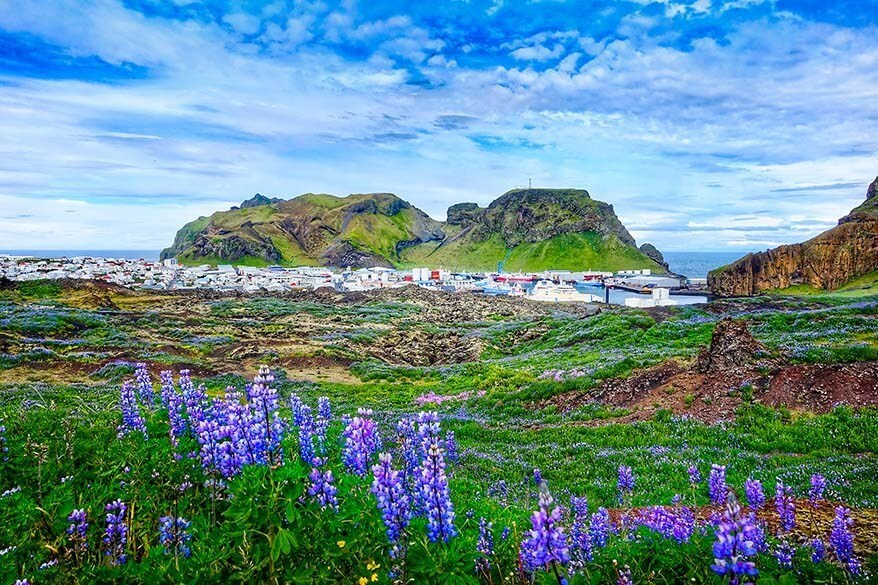 Vestmannaeyjabaer town in the Westman Islands