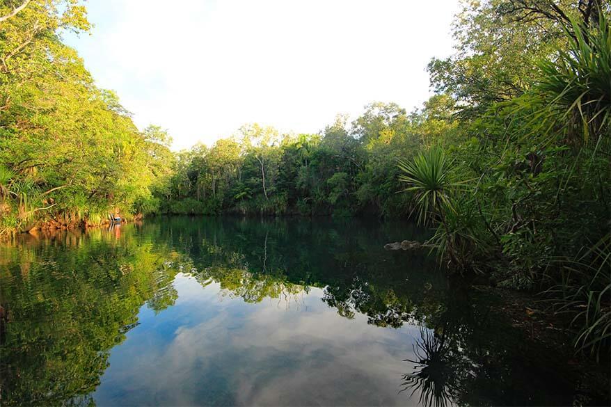Berry Springs near Darwin Australia