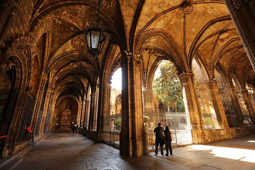 Garden of the Cathedral of Barcelona - one of the best places to see in the Gothic Quarter in Barcelona