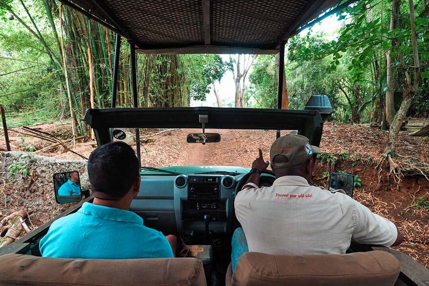 Jeep Safari Tour in Heritage Nature Reserve in Mauritius