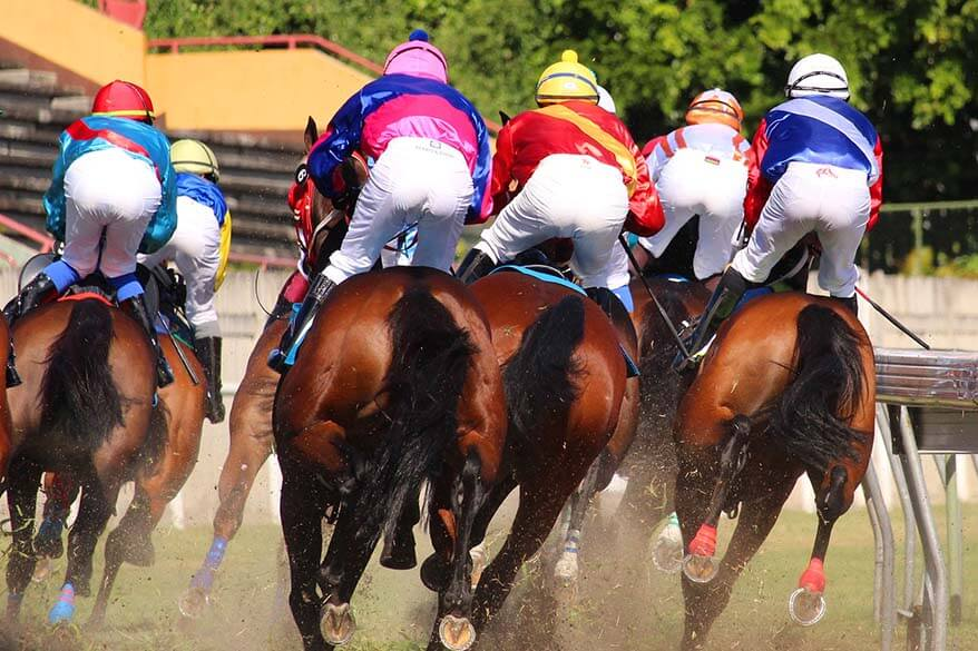 Watching horse races at Champ de Mars is one of the best local things to do in Mauritius