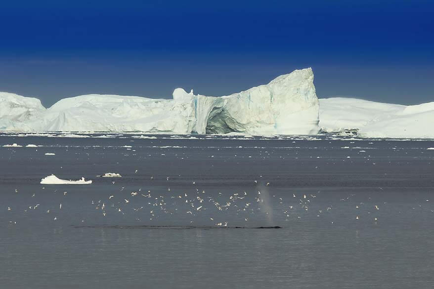 Disko Bay in Greenland