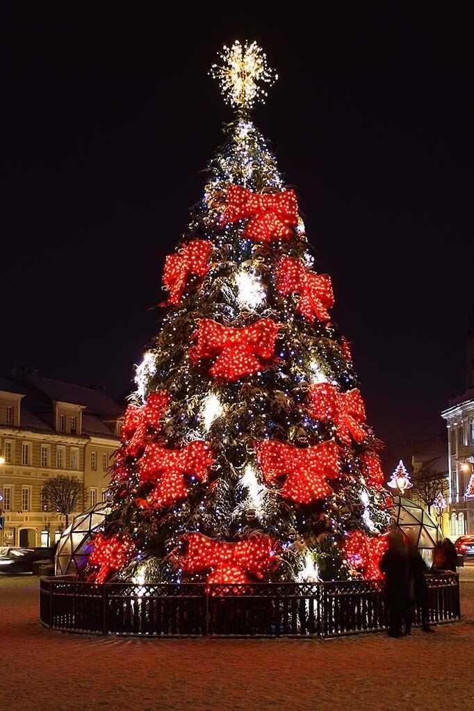 Vilnius Christmas tree 2017