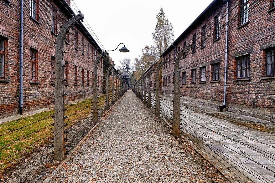 Auschwitz Tour: How to Visit & Important Things to Know