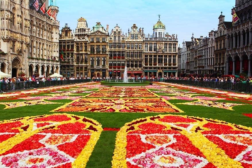 Brussels Flower Carpet - complete guide for your visit