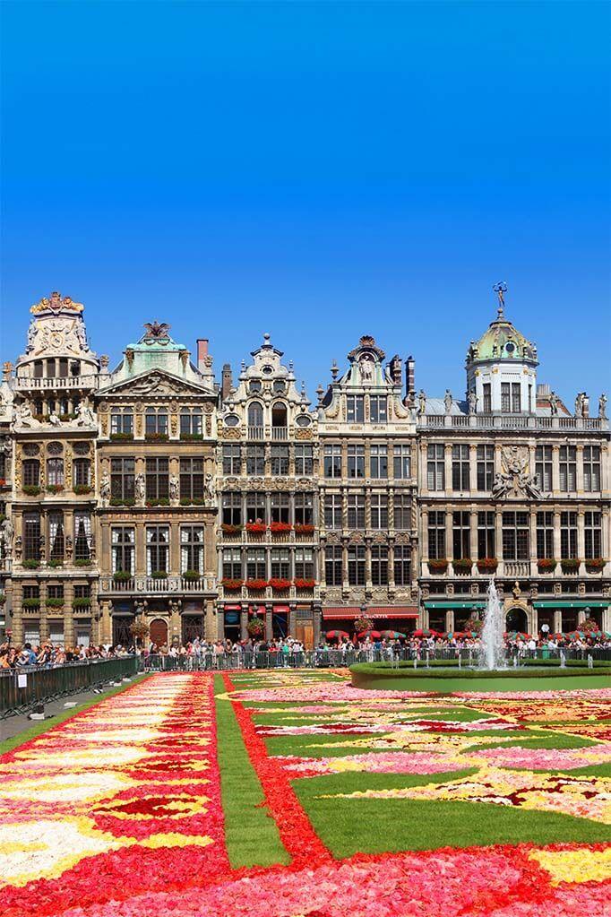 Brussels Flower Market 2010