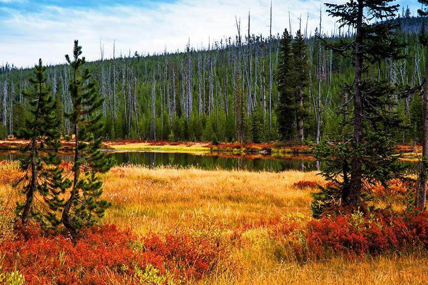 Colorful landscape of Yellowstone in the fall
