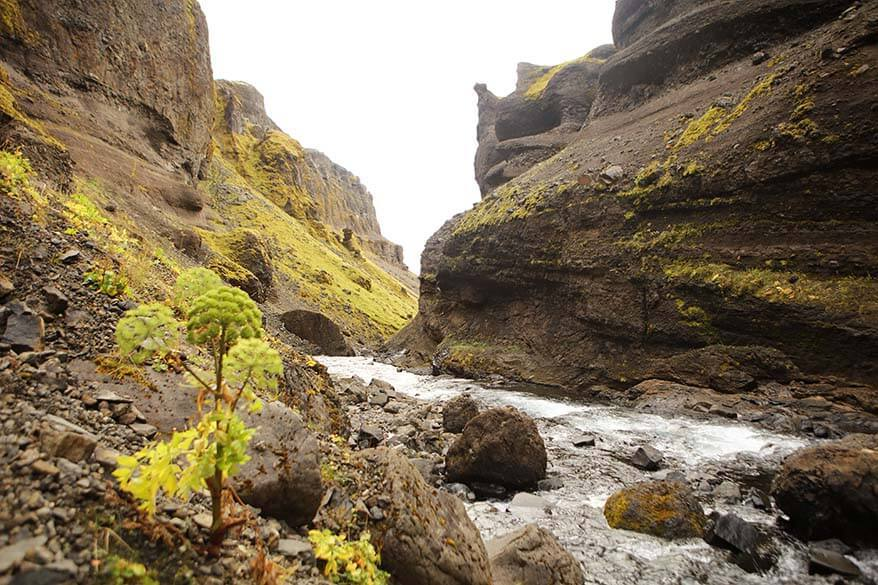 Fossa river canyon in Fossardalur valley in Iceland