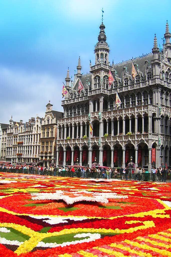 Maison du Roi - Brussels City Museum during the bi-annual Brussels Flower Carpet celebration