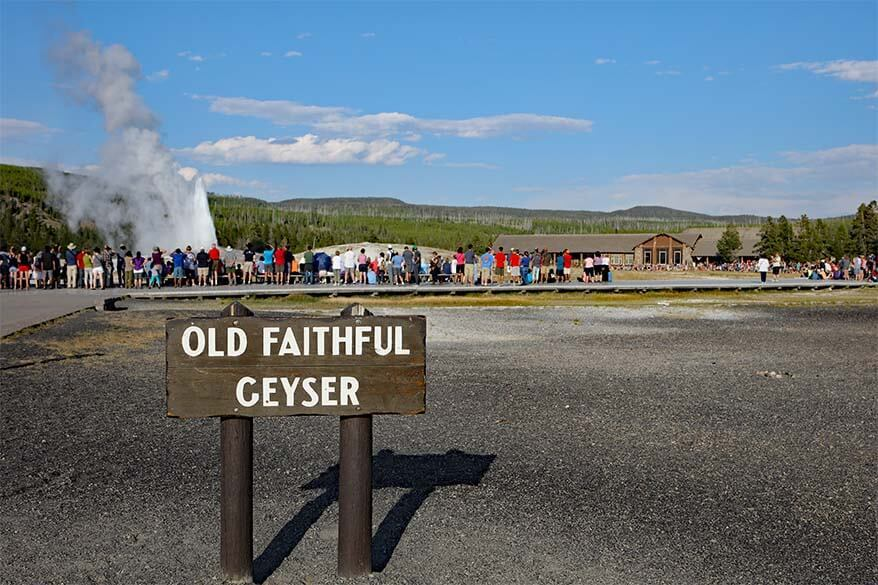 Old Faithful Geyser in Yellowstone in July