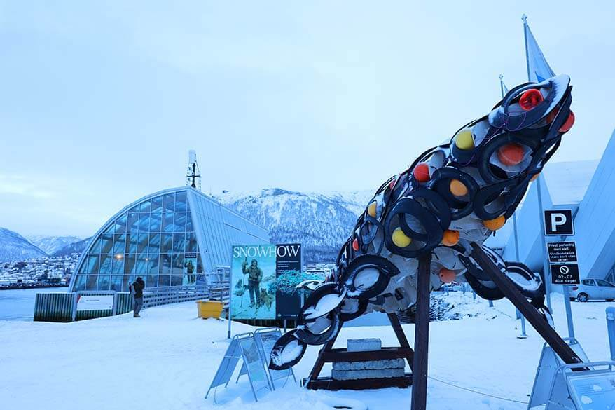 Tromso attractions - Polaria