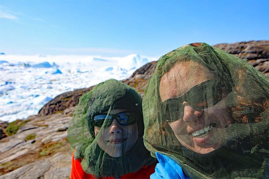 Wearing mosquito head nets at the Ilulissat Icefjord in Greenland in July