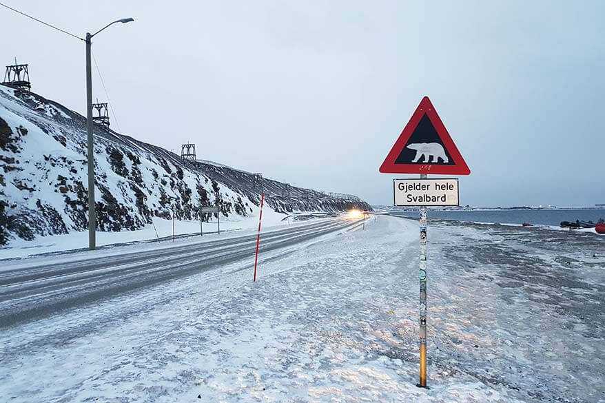 Bear warning sign on the road out of Longyearbyen in Svalbard