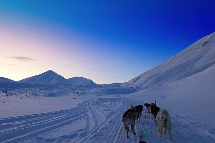 Dog sledding in Svalbard - one of the best things to do in winter