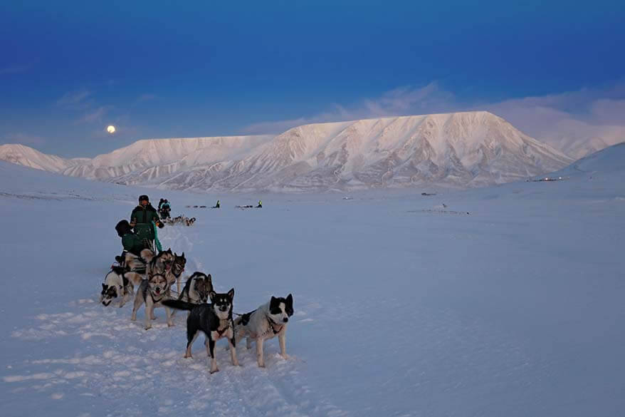 Svalbard travel guide and tips