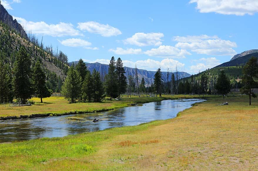 Green landscapes of Yellowstone National Park in July