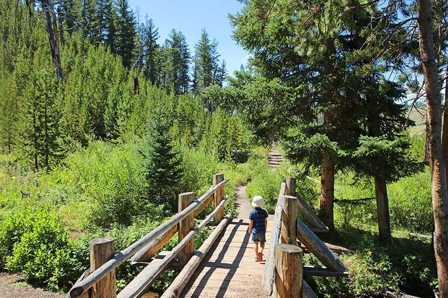 Hiking to Wraith Falls in Yellowstone in summer
