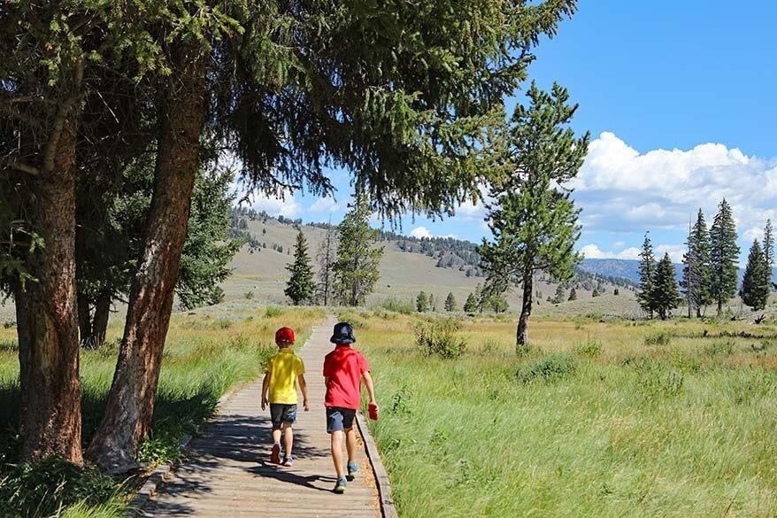 Kids hiking in Yellowstone in summer