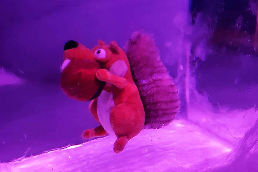 Scrat from Ice Age frozen inside an ice tunnel at Mt Titlis Glacier Cave, Switzerland