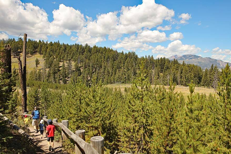 Yellowstone in summer - guide to visiting Yellowstone in July and August