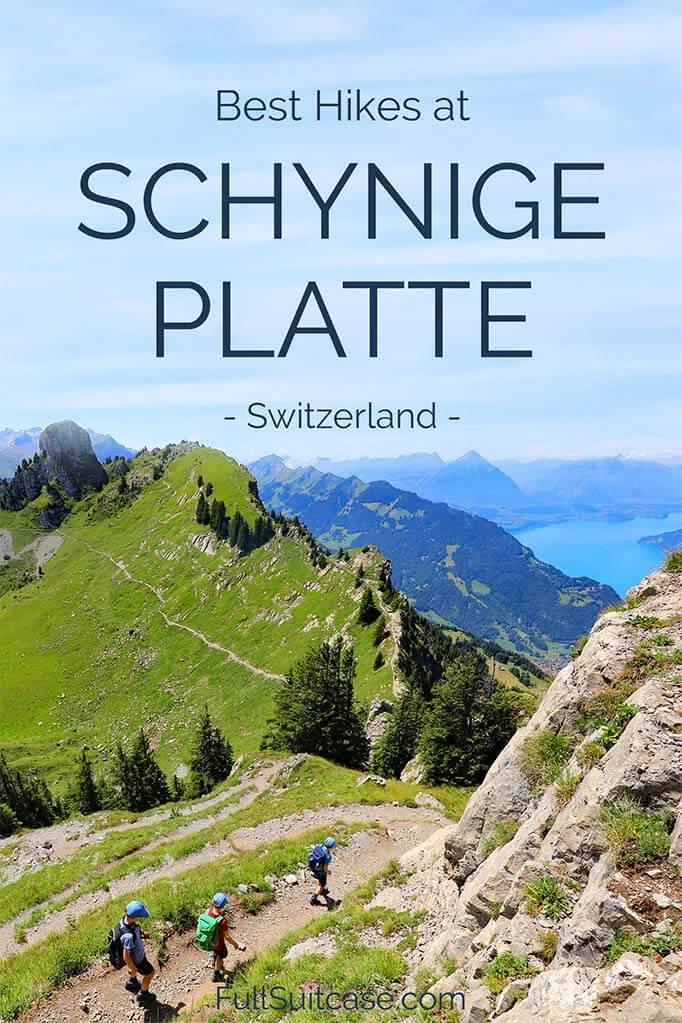 Best Schynige Platte hikes