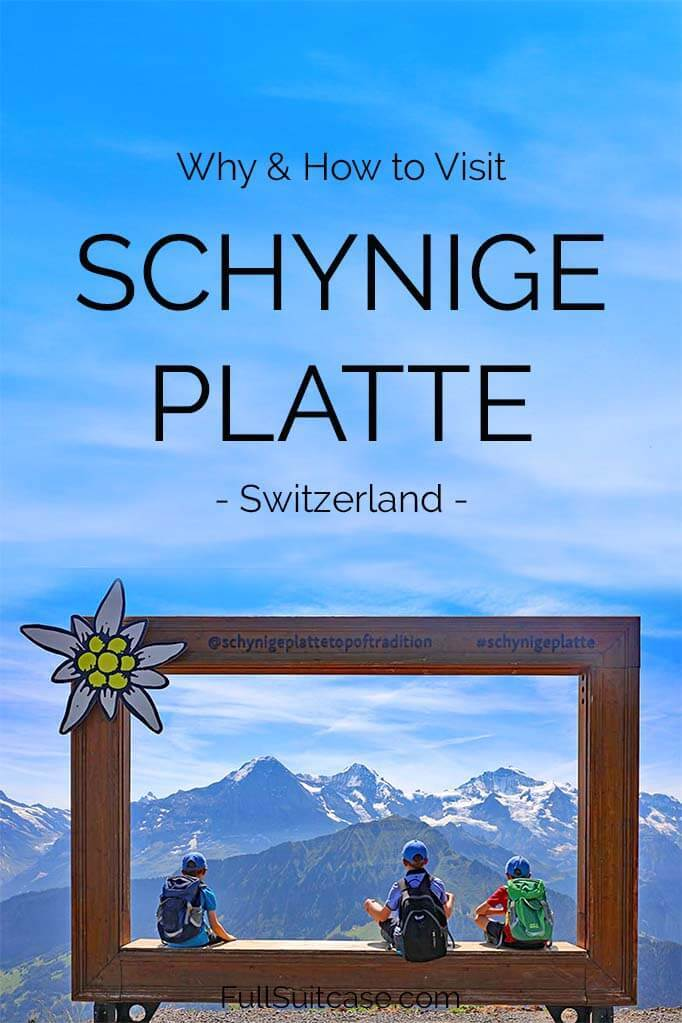Best things to do at Schynige Platte