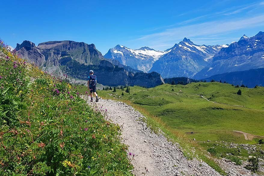 Hiking in the direction of Loucherhorn at Schynige Platte