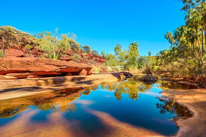 Palm Valley in Red Center Australia