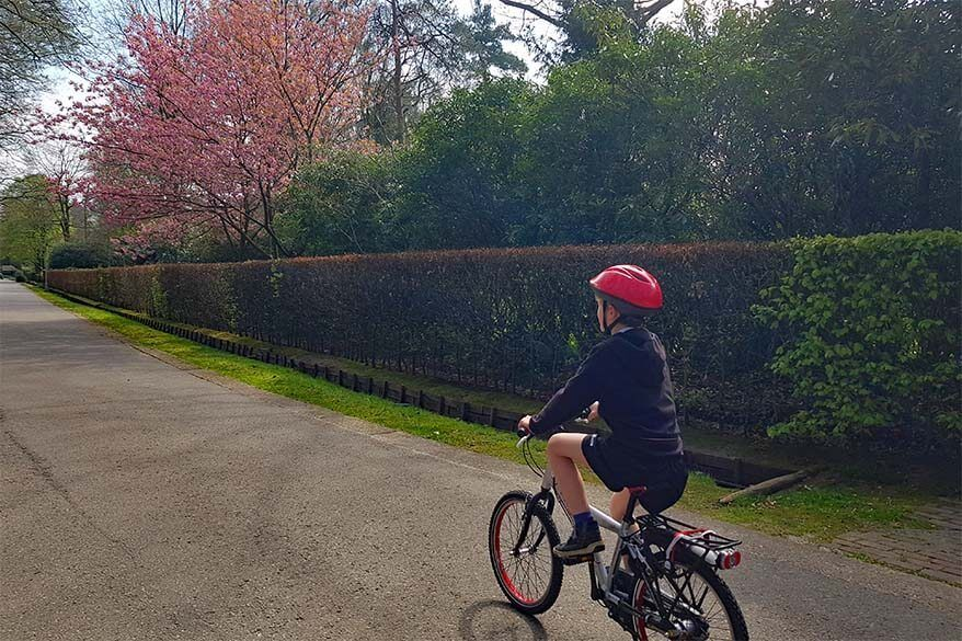 Quarantine day 30 - biking