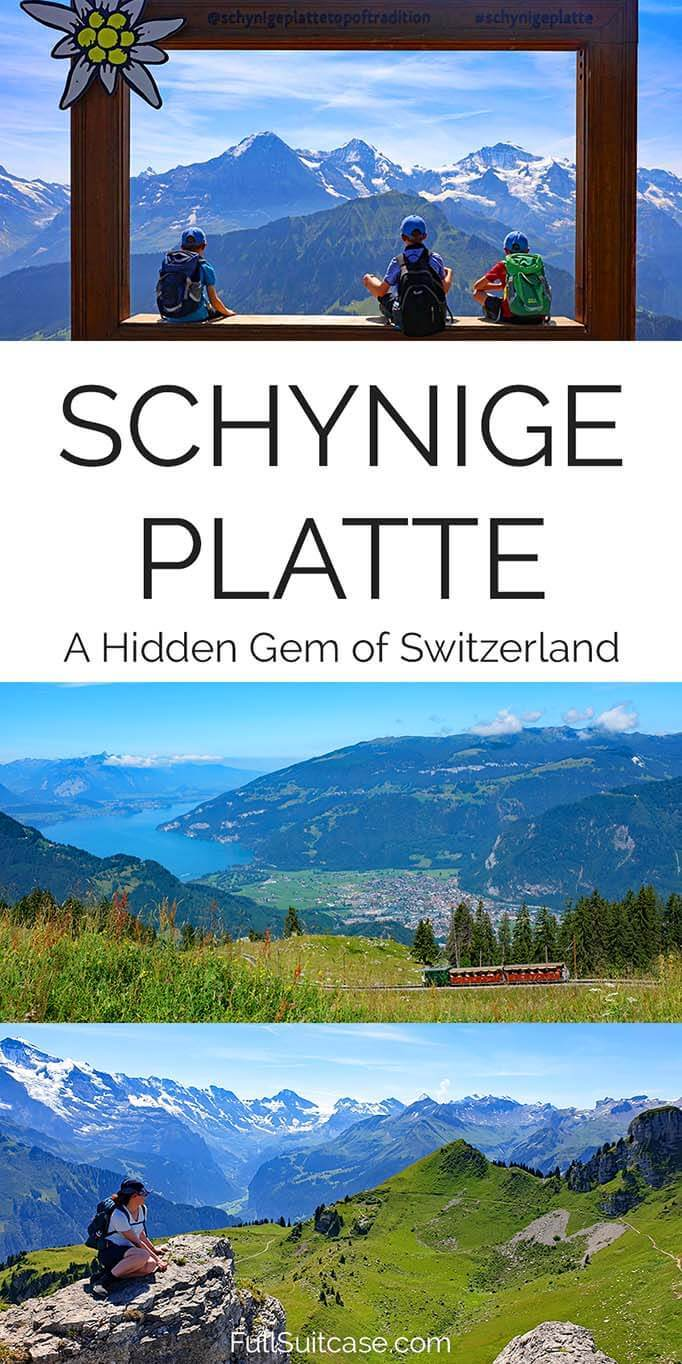 Why and how to visit Schynige Platte in Switzerland