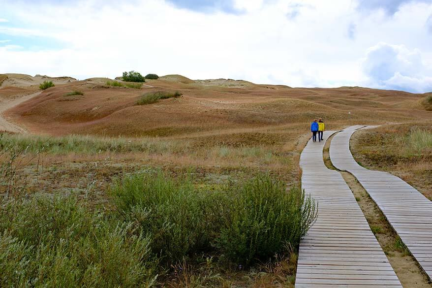 Cognitive Trail in Nagliai Nature Reserve on the Curonian Spit in Lithuania