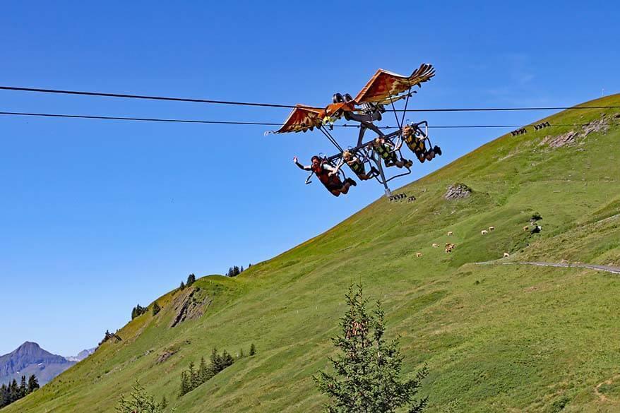 First Glider in Grindelwald-First