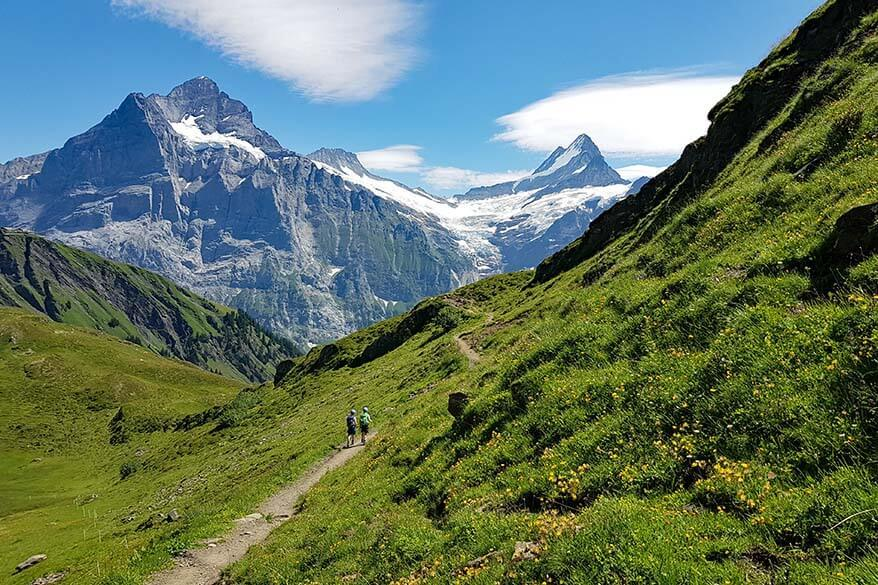 Hiking Flower Trail in Grindelwald