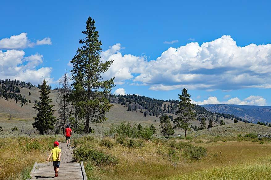 Kids hiking Wraith Falls Trail in Yellowstone