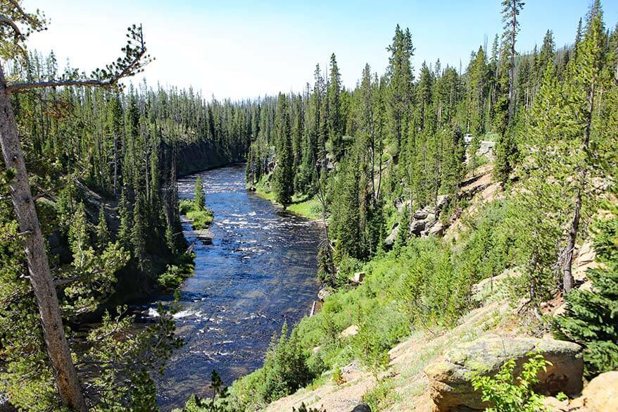 Lewis River in Yellowstone