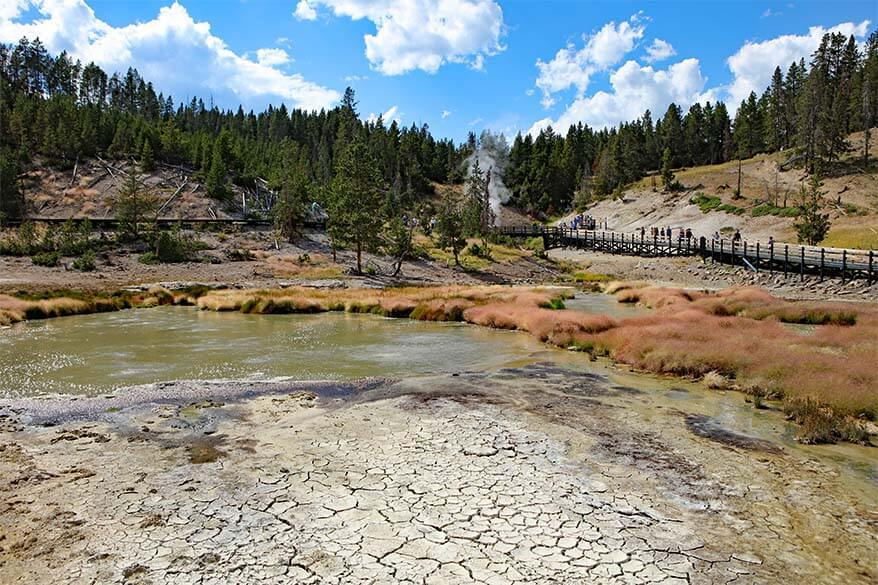 Mud Volcano area in Yellowstone