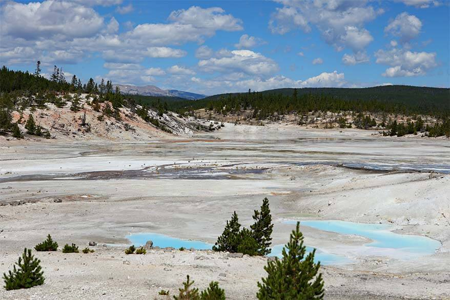 Porcelain Basin at Norris Geyser Basin