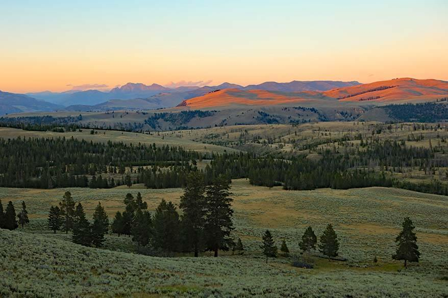 Yellowstone scenery at Dunraven Pass