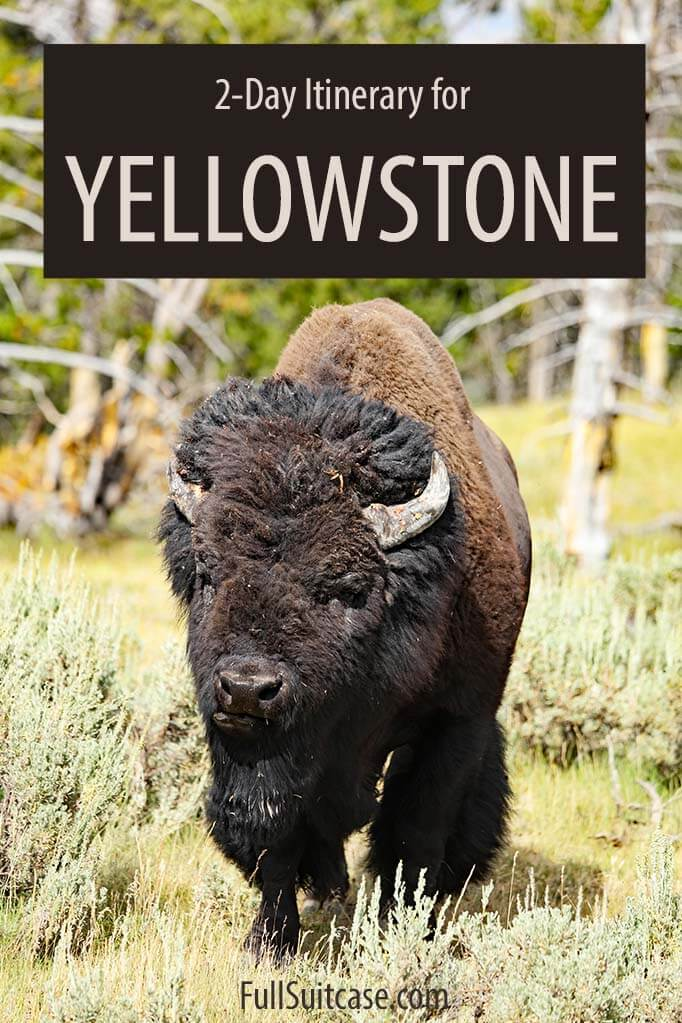 Yellowstone two days itinerary