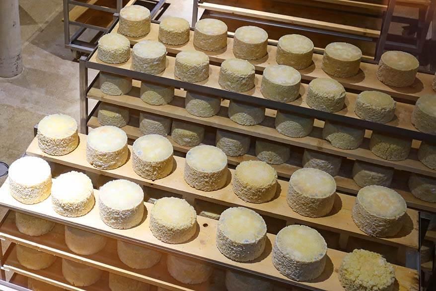 Cheese at ErlebnisSennerei Zillertal