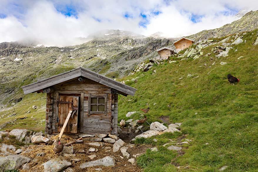 Zillertal Alps in summer