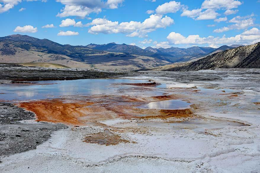 Canary Spring in Mammoth Hot Springs area of Yellowstone National Park
