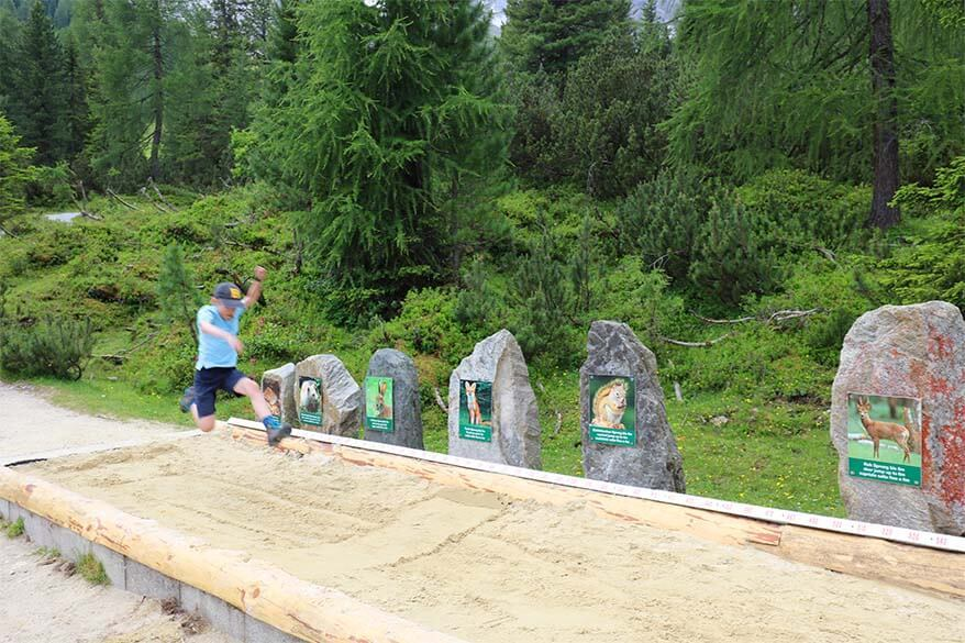 Fun attractions for kids along Nature Trail at Schlick 2000