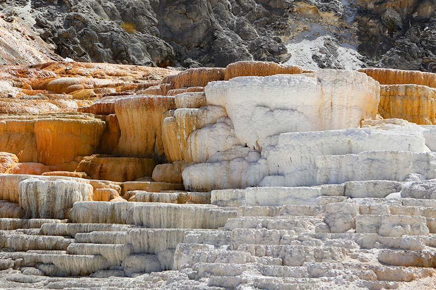 Geothermal features of Mammoth Hot Springs in Yellowstone