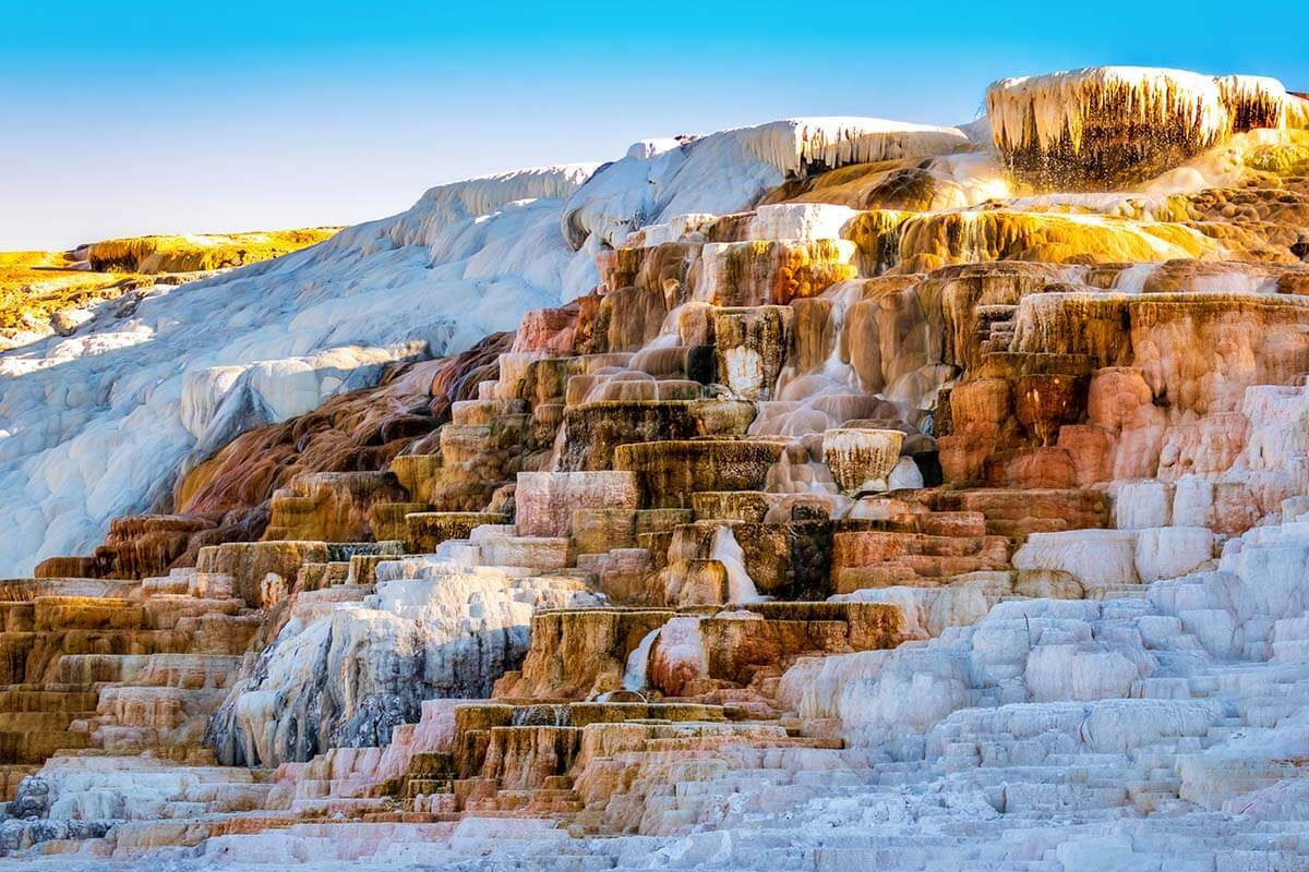 Mammoth Hot Springs, Yellowstone: What to See, Map & Tips