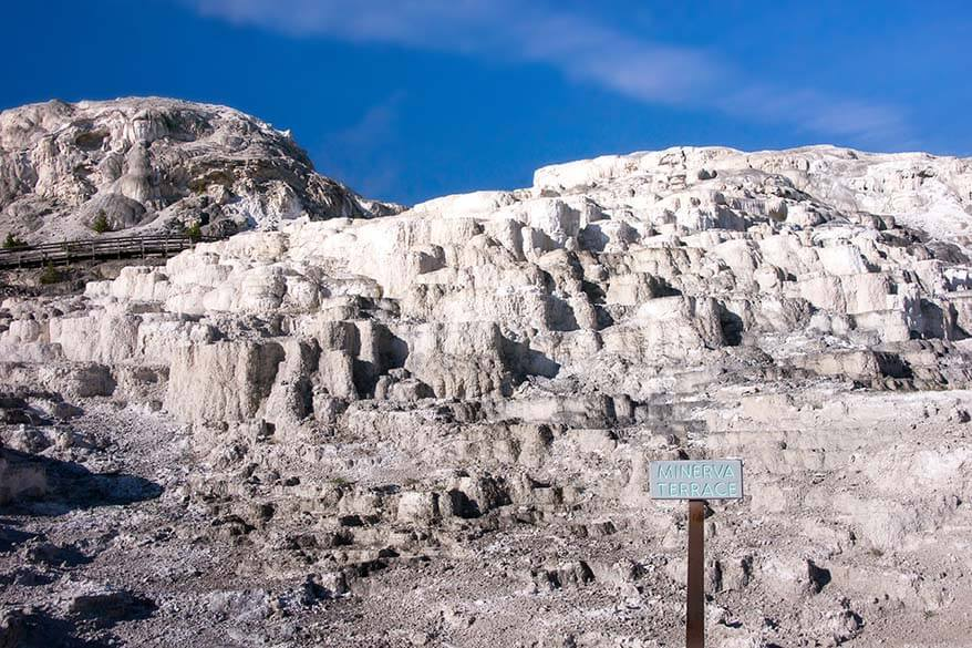 Minerva Terrace - one of the best places to see at Mammoth Hot Springs