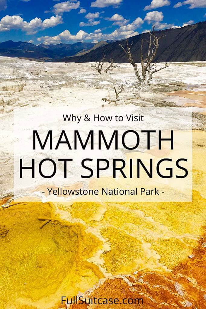 What to see and do at Mammoth Hot Springs in Yellowstone National Park
