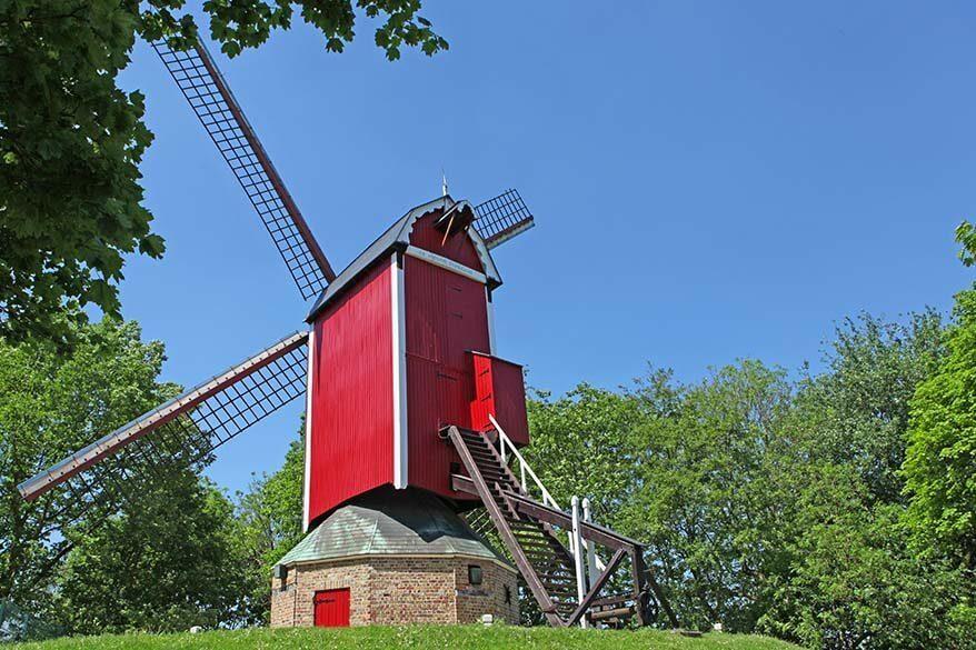 Windmill De Nieuwe Papegaai in Bruges, Belgium