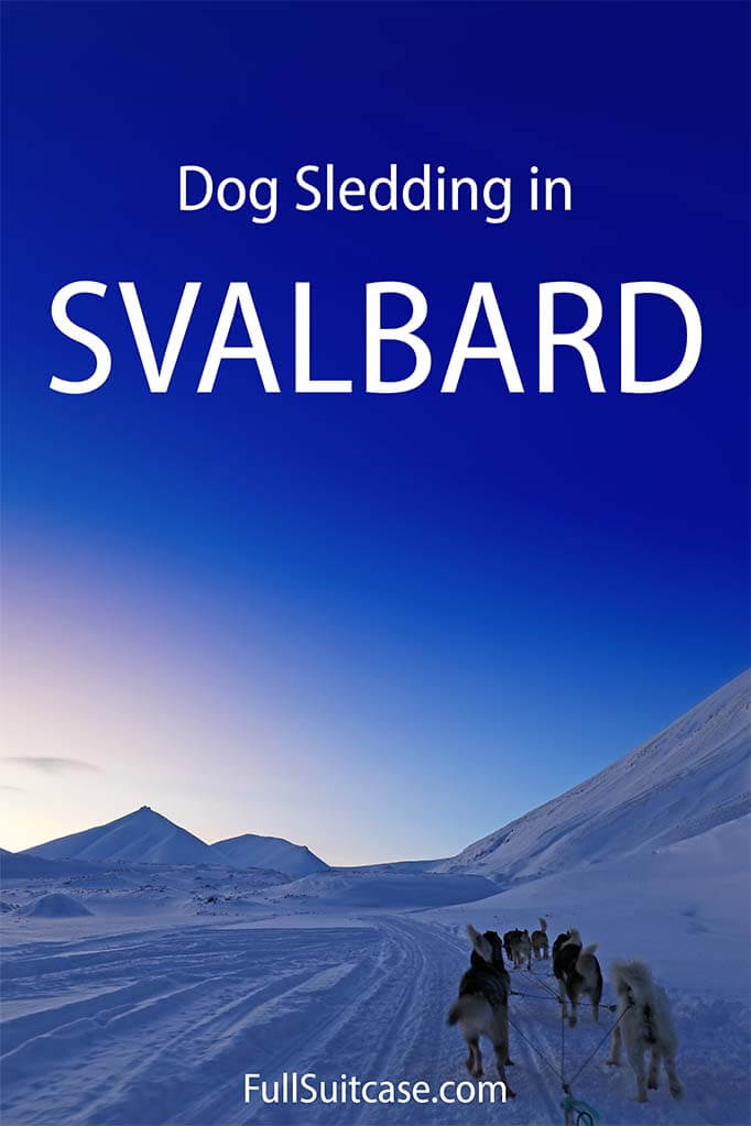 Complete guide to dog sledding in Svalbard Northern Norway